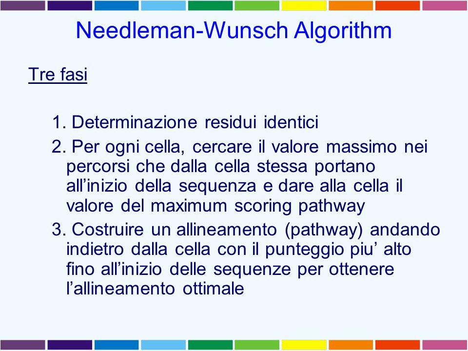 Needleman-Wunsch Algorithm Tre fasi 1. Determinazione residui identici 2.