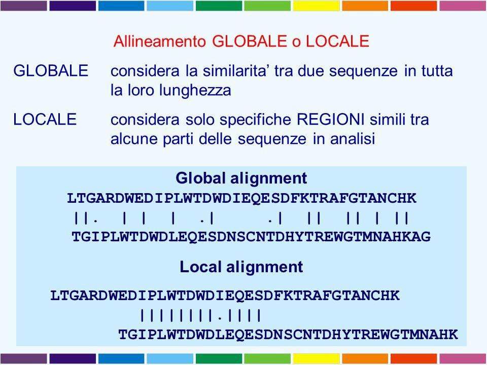 Allineamento GLOBALE o LOCALE GLOBALEconsidera la similarita' tra due sequenze in tutta la loro lunghezza LOCALE considera solo specifiche REGIONI sim