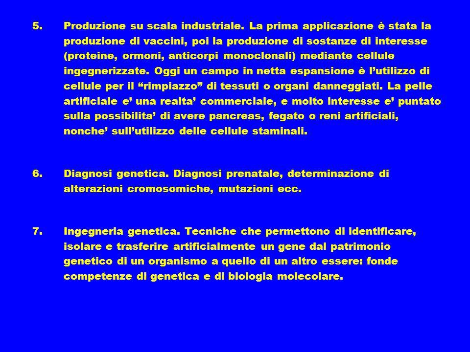 5.Produzione su scala industriale. La prima applicazione è stata la produzione di vaccini, poi la produzione di sostanze di interesse (proteine, ormon