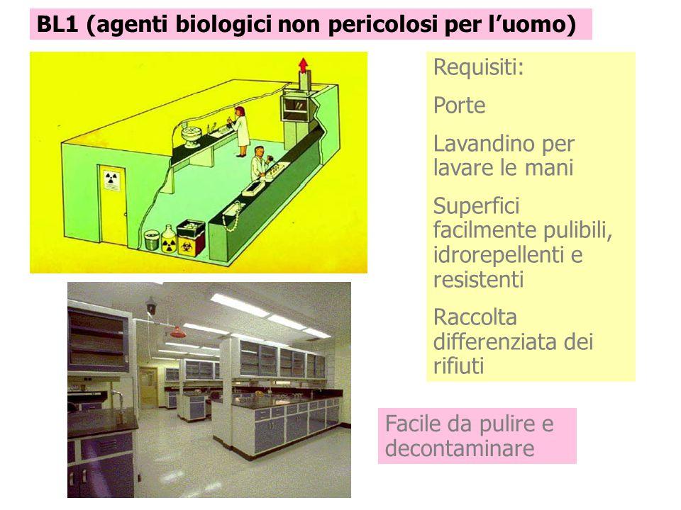 BL1 (agenti biologici non pericolosi per l'uomo) Requisiti: Porte Lavandino per lavare le mani Superfici facilmente pulibili, idrorepellenti e resiste