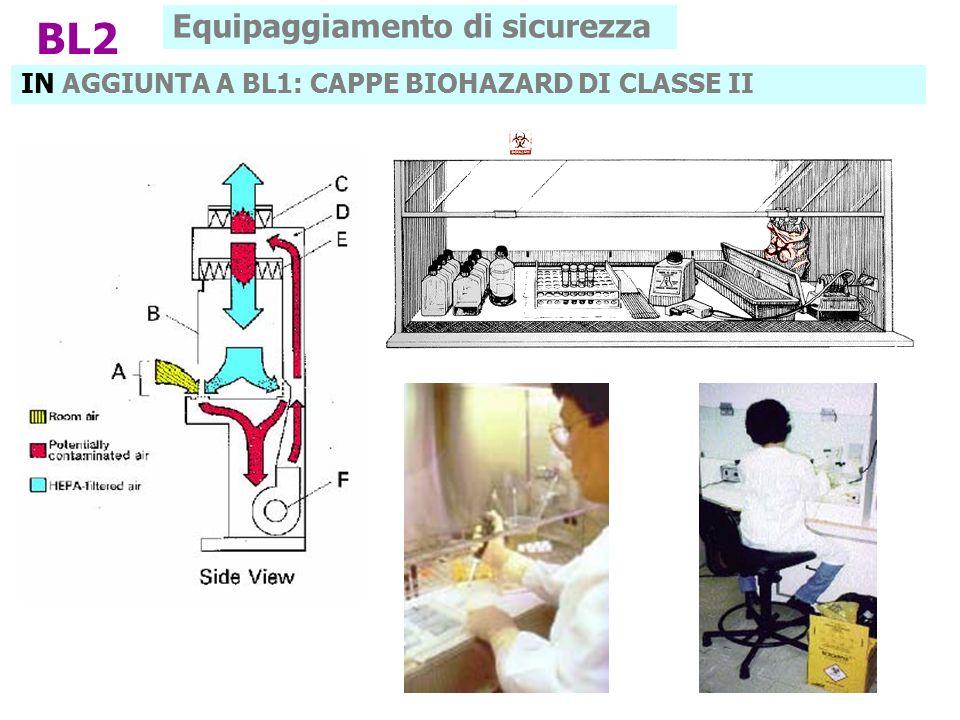 IN AGGIUNTA A BL1: CAPPE BIOHAZARD DI CLASSE II BL2 Equipaggiamento di sicurezza