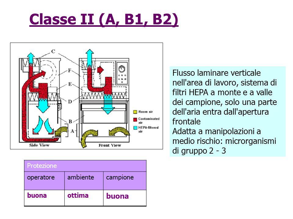 Classe II (A, B1, B2) Flusso laminare verticale nell'area di lavoro, sistema di filtri HEPA a monte e a valle dei campione, solo una parte dell'aria e