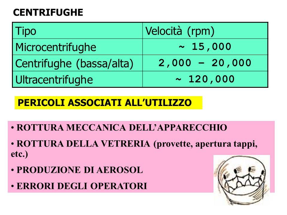 TipoVelocità (rpm) Microcentrifughe ~ 15,000 Centrifughe (bassa/alta) 2,000 – 20,000 Ultracentrifughe ~ 120,000 PERICOLI ASSOCIATI ALL'UTILIZZO ROTTUR