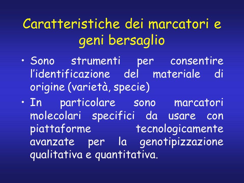 Caratteristiche dei marcatori e geni bersaglio Sono strumenti per consentire l'identificazione del materiale di origine (varietà, specie) In particola