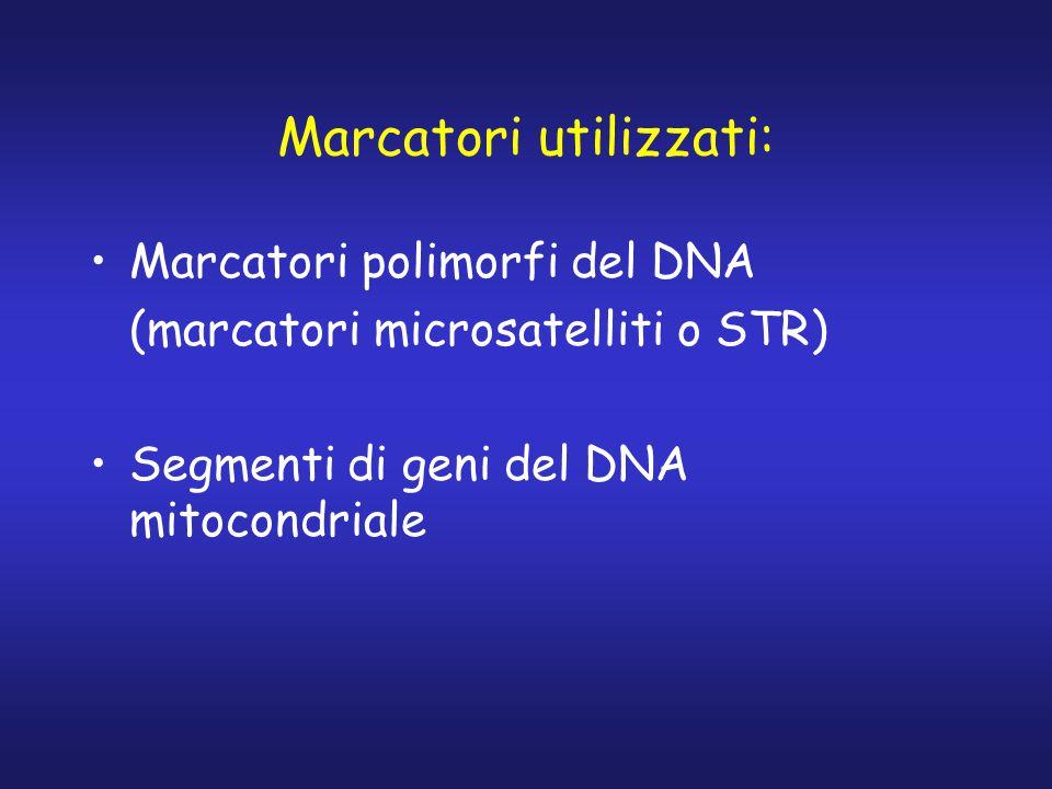 Marcatori utilizzati: Marcatori polimorfi del DNA (marcatori microsatelliti o STR) Segmenti di geni del DNA mitocondriale