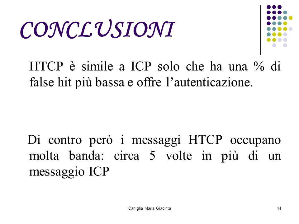 Caniglia Maria Giacinta44 CONCLUSIONI HTCP è simile a ICP solo che ha una % di false hit più bassa e offre l'autenticazione. Di contro però i messaggi