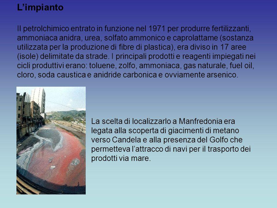L'impianto Il petrolchimico entrato in funzione nel 1971 per produrre fertilizzanti, ammoniaca anidra, urea, solfato ammonico e caprolattame (sostanza