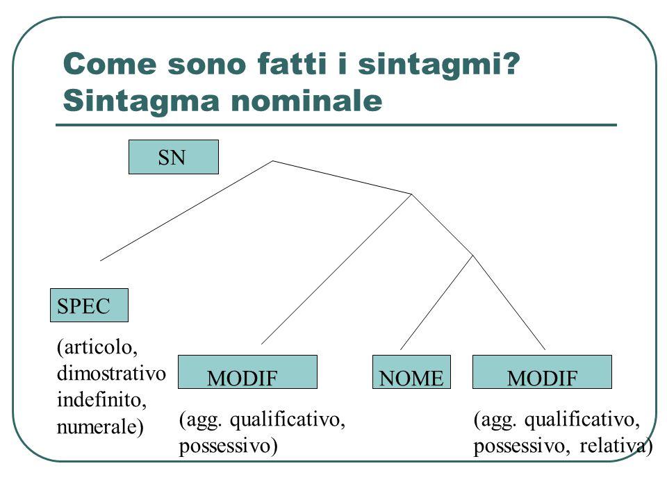 Come sono fatti i sintagmi? Sintagma nominale SPEC (articolo, dimostrativo indefinito, numerale) NOME MODIF (agg. qualificativo, possessivo) MODIF (ag
