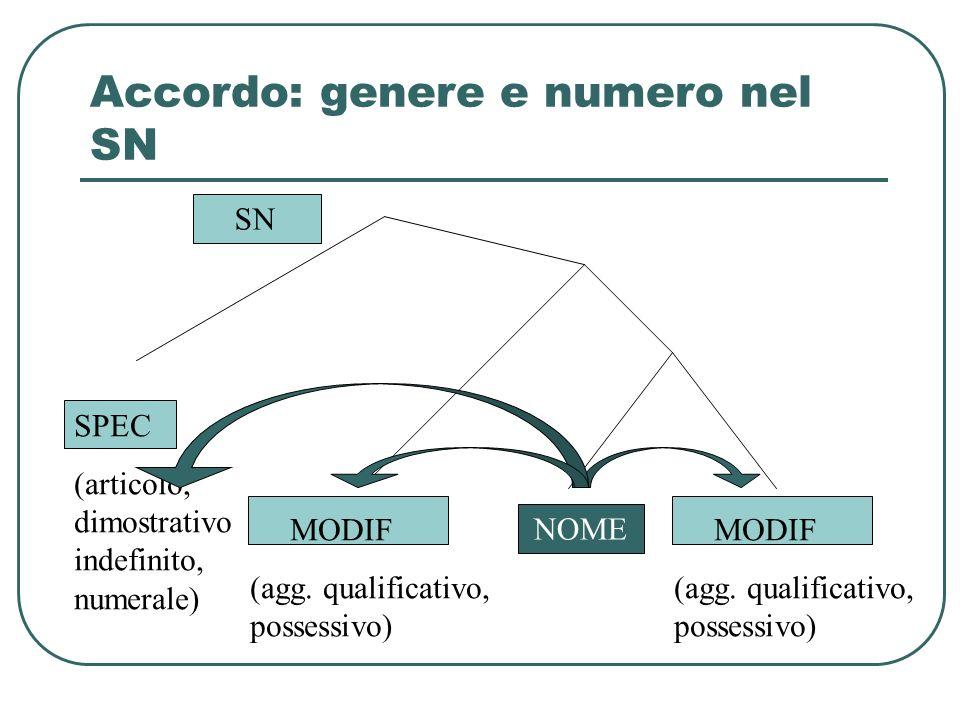 Accordo: genere e numero nel SN SPEC (articolo, dimostrativo indefinito, numerale) NOME MODIF (agg. qualificativo, possessivo) MODIF (agg. qualificati