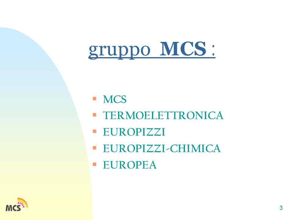 3 gruppo MCS :  MCS  TERMOELETTRONICA  EUROPIZZI  EUROPIZZI-CHIMICA  EUROPEA