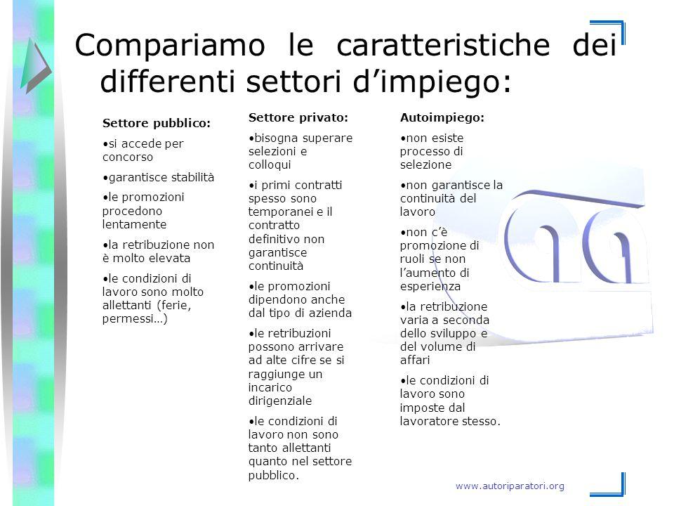 www.autoriparatori.org Compariamo le caratteristiche dei differenti settori d'impiego: Settore pubblico: si accede per concorso garantisce stabilità l