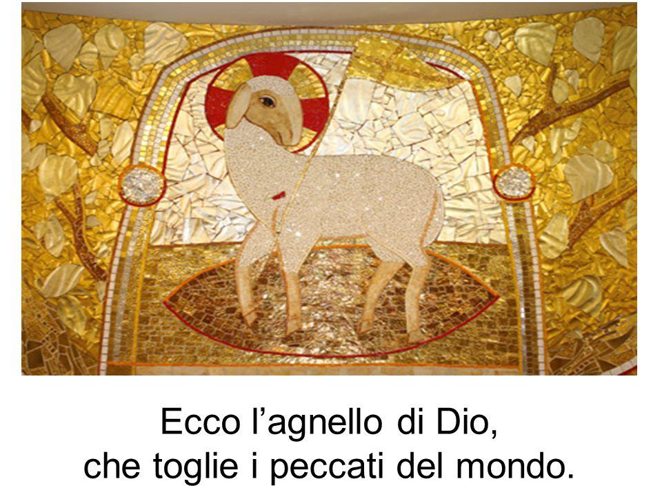 Ecco l'agnello di Dio, che toglie i peccati del mondo.