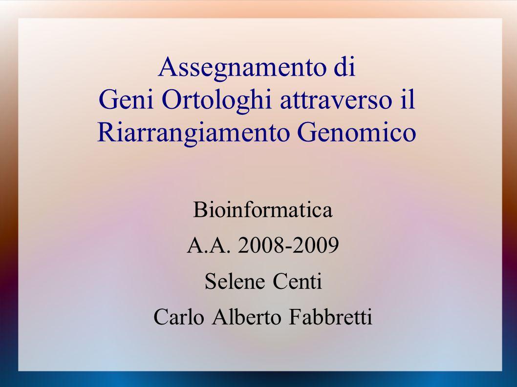 Assegnamento di Geni Ortologhi attraverso il Riarrangiamento Genomico Bioinformatica A.A.