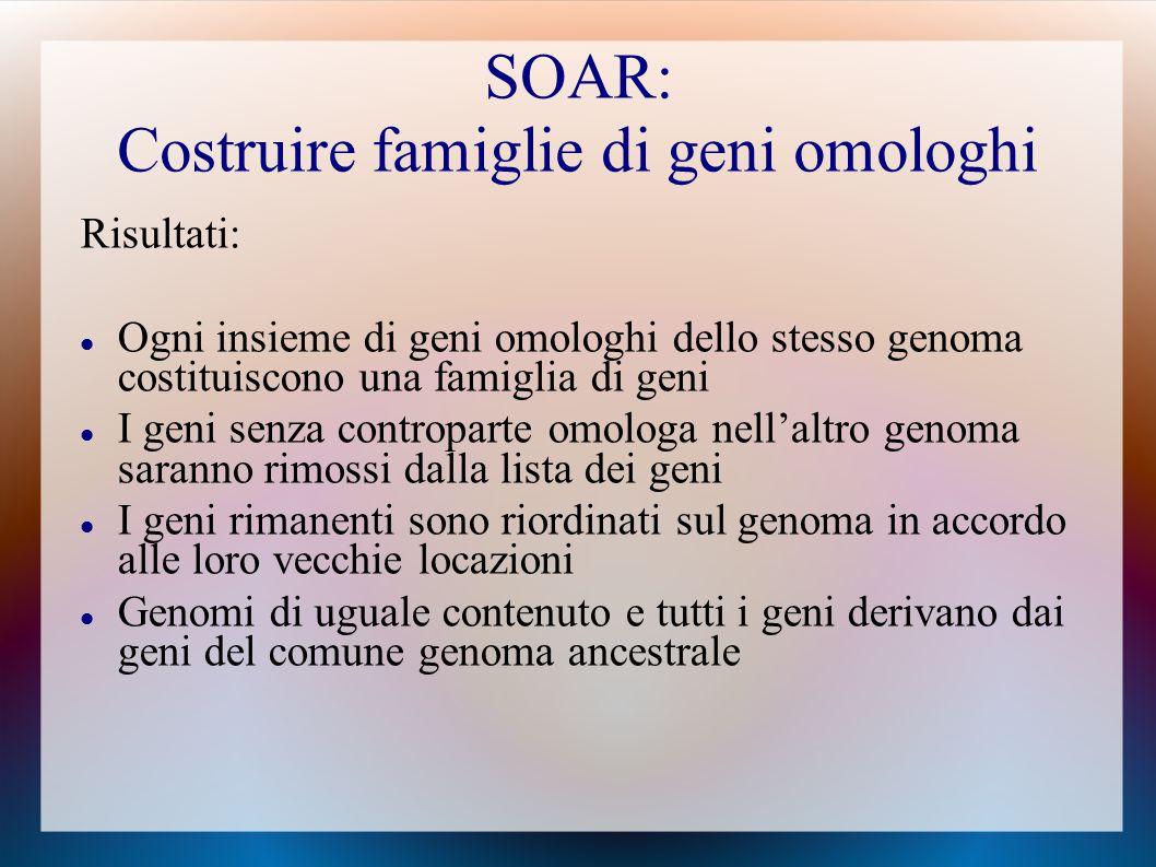 Risultati: Ogni insieme di geni omologhi dello stesso genoma costituiscono una famiglia di geni I geni senza controparte omologa nell'altro genoma saranno rimossi dalla lista dei geni I geni rimanenti sono riordinati sul genoma in accordo alle loro vecchie locazioni Genomi di uguale contenuto e tutti i geni derivano dai geni del comune genoma ancestrale SOAR: Costruire famiglie di geni omologhi