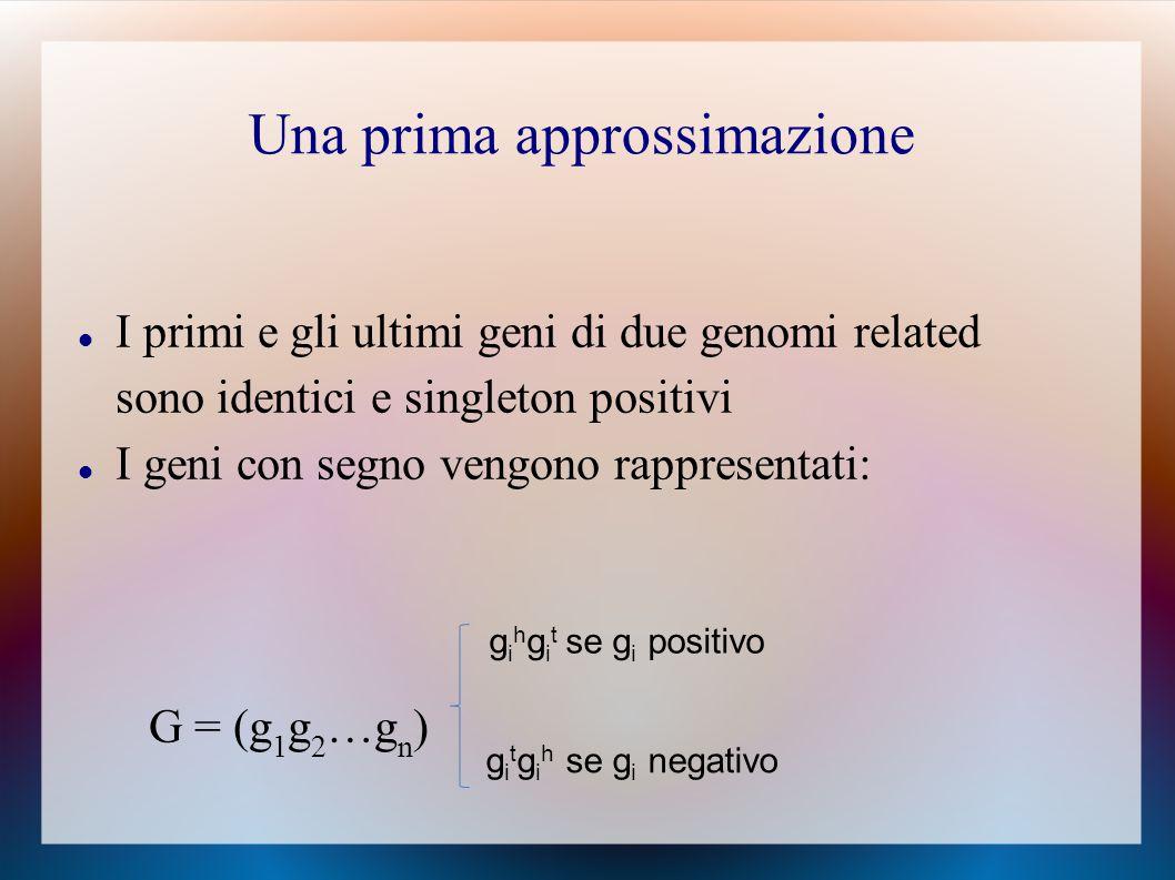 I primi e gli ultimi geni di due genomi related sono identici e singleton positivi I geni con segno vengono rappresentati: G = (g 1 g 2 …g n ) g i h g i t se g i positivo g i t g i h se g i negativo Una prima approssimazione