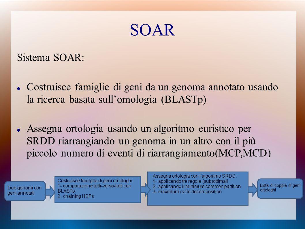 Sistema SOAR: Costruisce famiglie di geni da un genoma annotato usando la ricerca basata sull'omologia (BLASTp) Assegna ortologia usando un algoritmo euristico per SRDD riarrangiando un genoma in un altro con il più piccolo numero di eventi di riarrangiamento(MCP,MCD) Due genomi con geni annotati Lista di coppie di geni ortologhi Costruisce famiglie di geni omologhi: 1- comparazione tutti-verso-tutti con BLASTp 2- chaining HSPs Assegna ortologia con l'algoritmo SRDD: 1- applicando tre regole (sub)ottimali 2- applicando il minimum common partition 3- maximum cycle decomposition SOAR