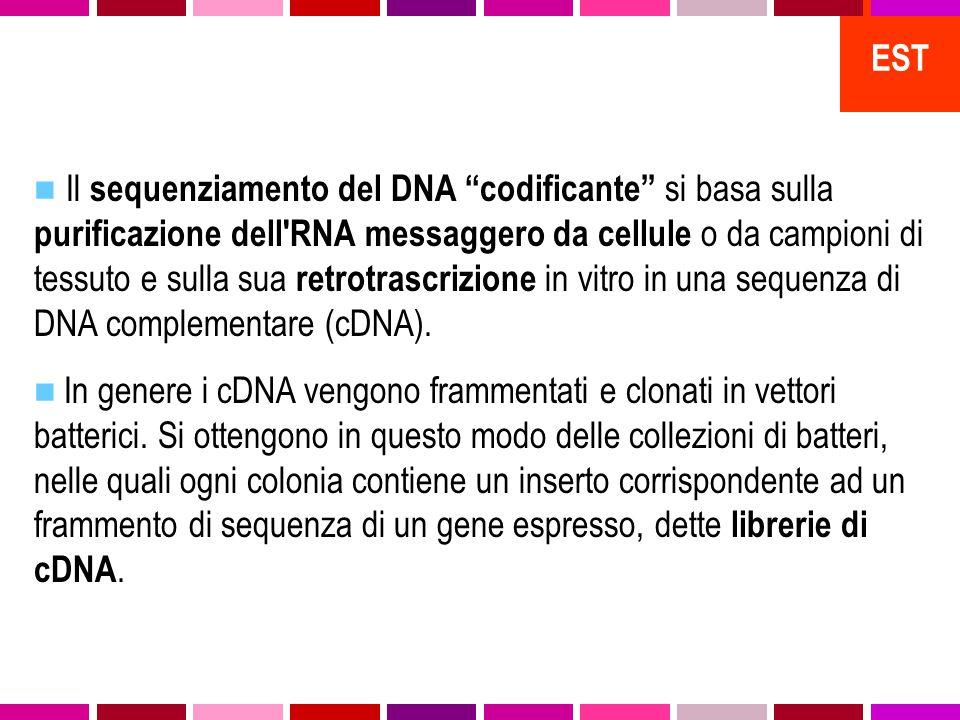 Il sequenziamento del DNA codificante si basa sulla purificazione dell RNA messaggero da cellule o da campioni di tessuto e sulla sua retrotrascrizione in vitro in una sequenza di DNA complementare (cDNA).