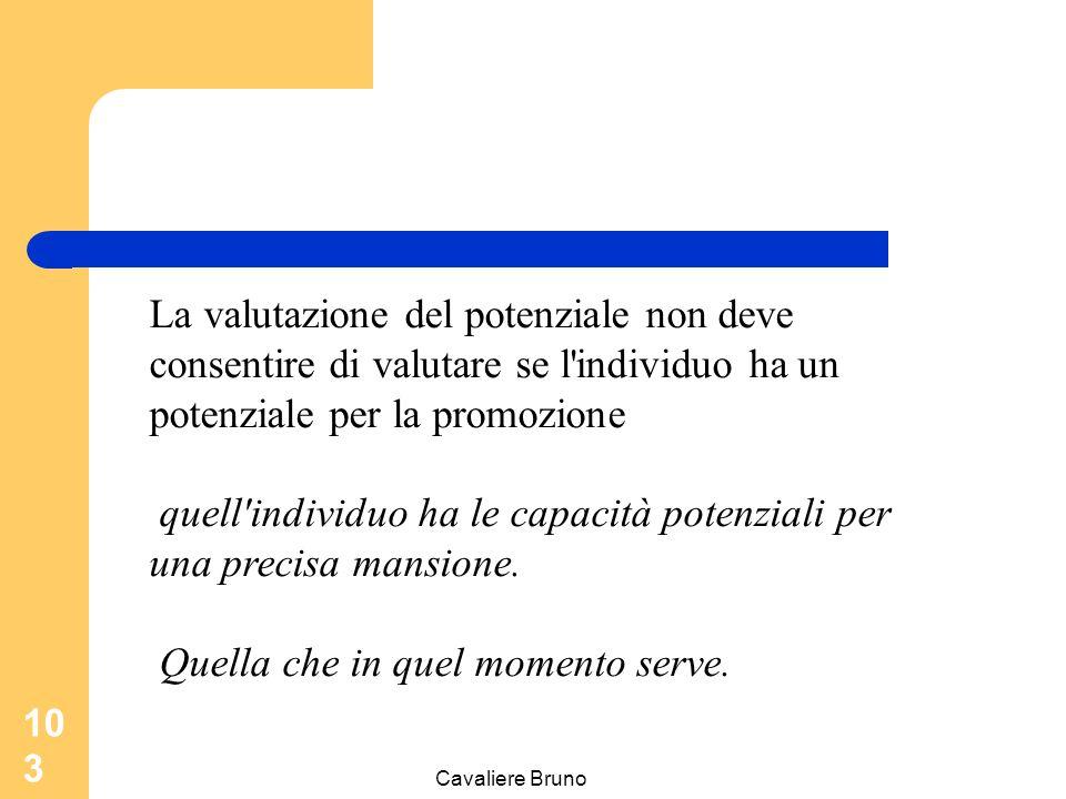Cavaliere Bruno 102 La valutazione del potenziale La valutazione del potenziale comporta, a differenza di quella sulla prestazione individuale, un giu