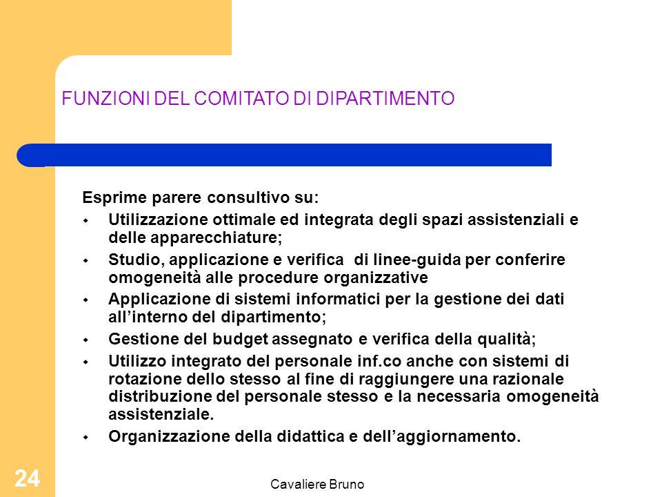 Cavaliere Bruno 23 FUNZIONI DEL CAPO DIPARTIMENTO Assicura il raggiungimento delle finalità del dipartimento individuate dal regolamento; Coordina l'attività delle Unità Operative che costituiscono il dipartimento; Assicura il rispetto delle risorse finanziarie assegnate in sede di definizione del budget.