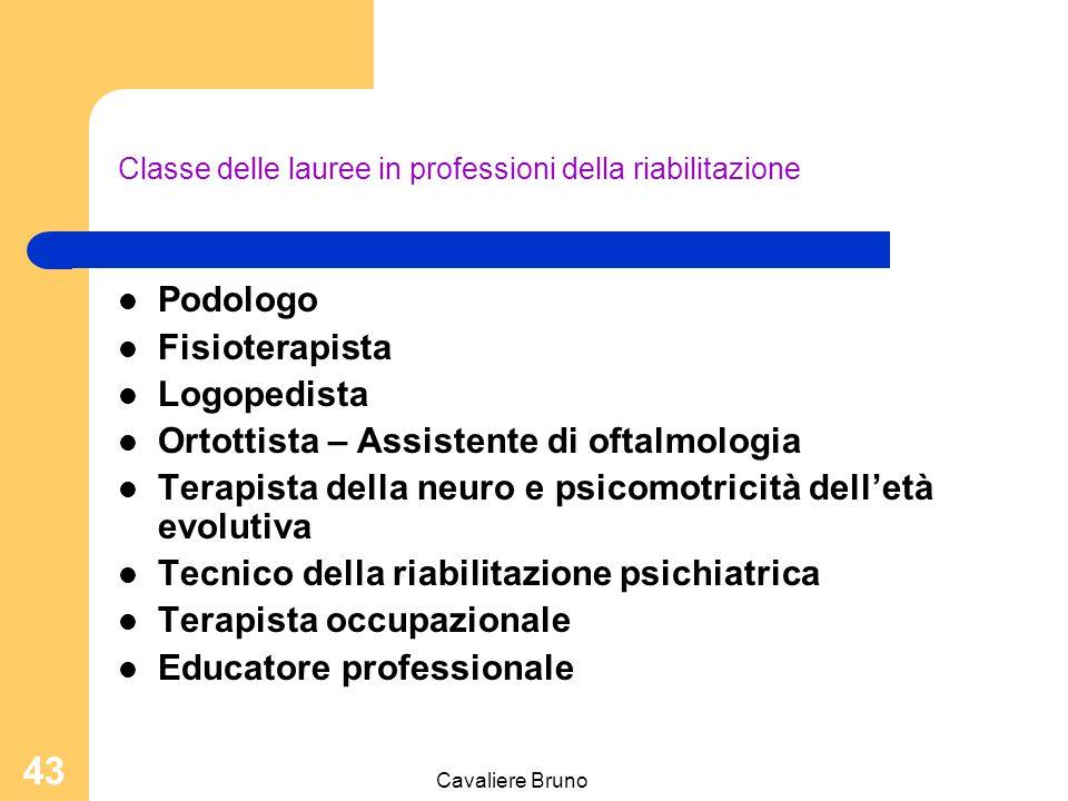 Cavaliere Bruno 42 Classe delle lauree in professioni sanitarie infermieristiche e professione sanitaria ostetrica Infermiere Infermiere pediatrico Ostetrica/o