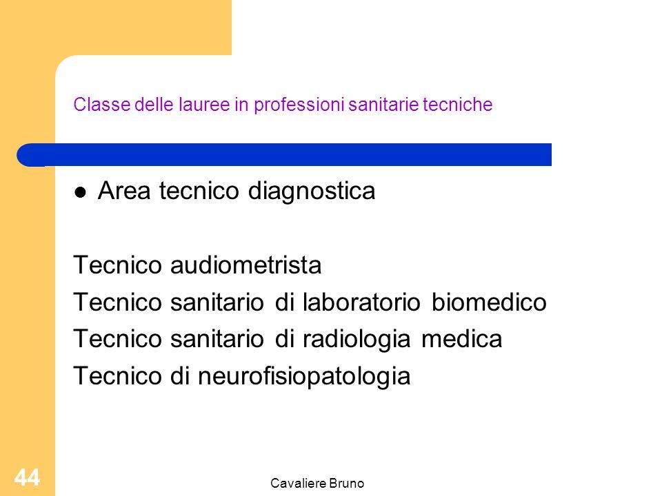 Cavaliere Bruno 43 Classe delle lauree in professioni della riabilitazione Podologo Fisioterapista Logopedista Ortottista – Assistente di oftalmologia