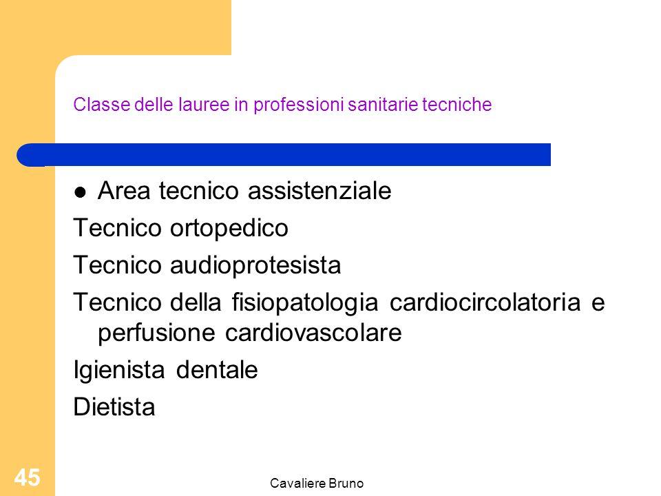 Cavaliere Bruno 44 Classe delle lauree in professioni sanitarie tecniche Area tecnico diagnostica Tecnico audiometrista Tecnico sanitario di laboratorio biomedico Tecnico sanitario di radiologia medica Tecnico di neurofisiopatologia