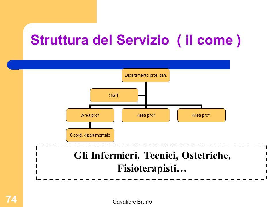 Cavaliere Bruno 73 Il dipartimento ; Servizio; Unità Operativa Funzioni principali: Responsabili del processo di cura Identificazione delle priorità D