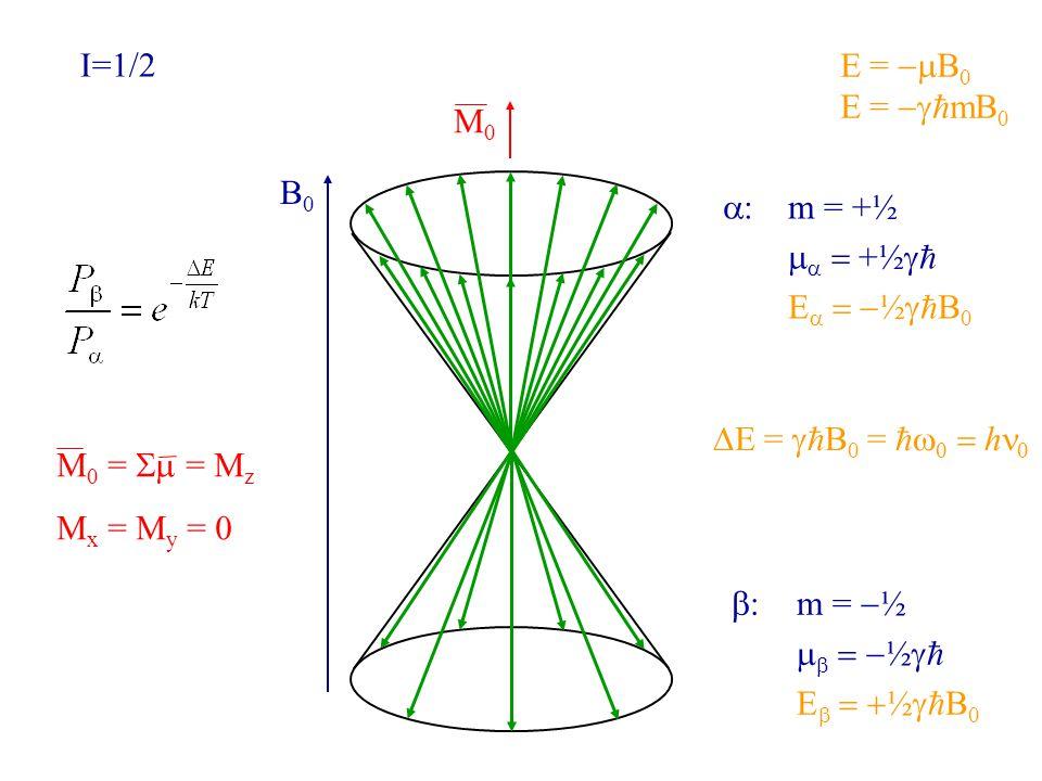 B0B0 M0M0 I=1/2 E =  B 0 E =   mB 0  :m = +½    +½   E   ½   B 0  :m =  ½    ½   E   ½   B 0 M 0 =  = M z M x = M y = 0  E =   B 0 =     h 