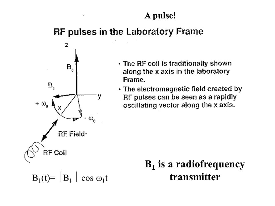 B 1 (t)=  B 1  cos  1 t B 1 is a radiofrequency transmitter A pulse!