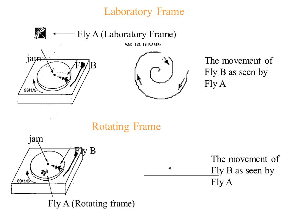 Laboratory Frame jam Fly A (Laboratory Frame) Fly B The movement of Fly B as seen by Fly A Rotating Frame Fly B jam The movement of Fly B as seen by F
