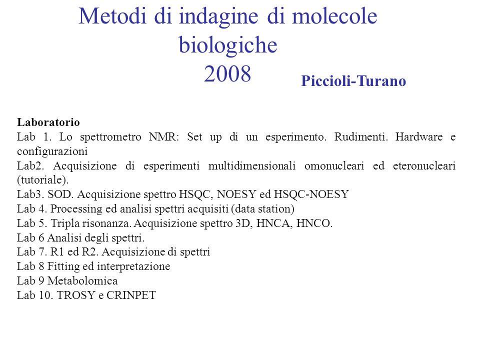 Metodi di indagine di molecole biologiche 2008 Piccioli-Turano Laboratorio Lab 1.