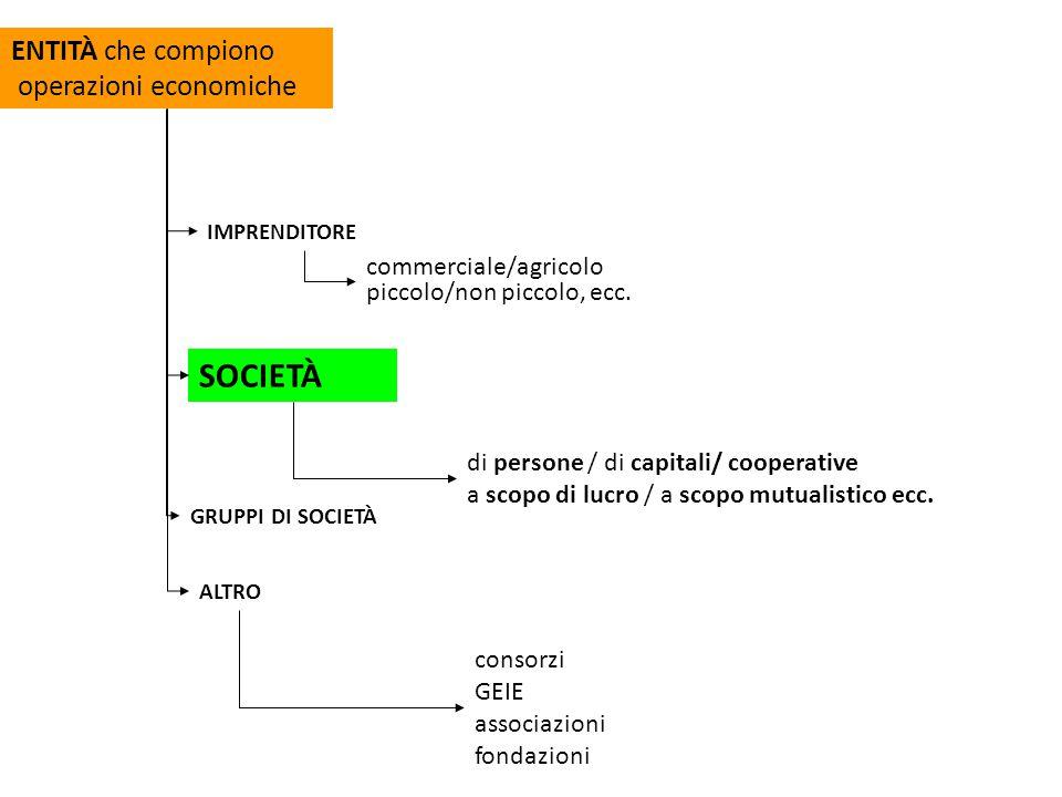 s.s. s.n.c. s.a.s. modello di base delle società di persone s.p.a s.r.l.