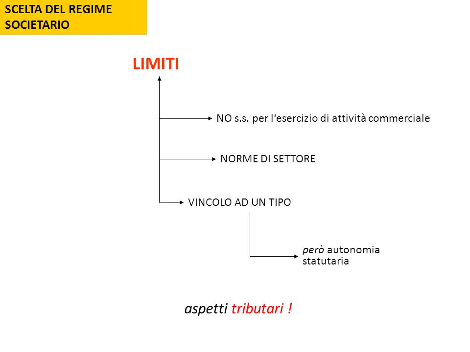 SCELTA DEL REGIME SOCIETARIO LIMITI NO s.s.