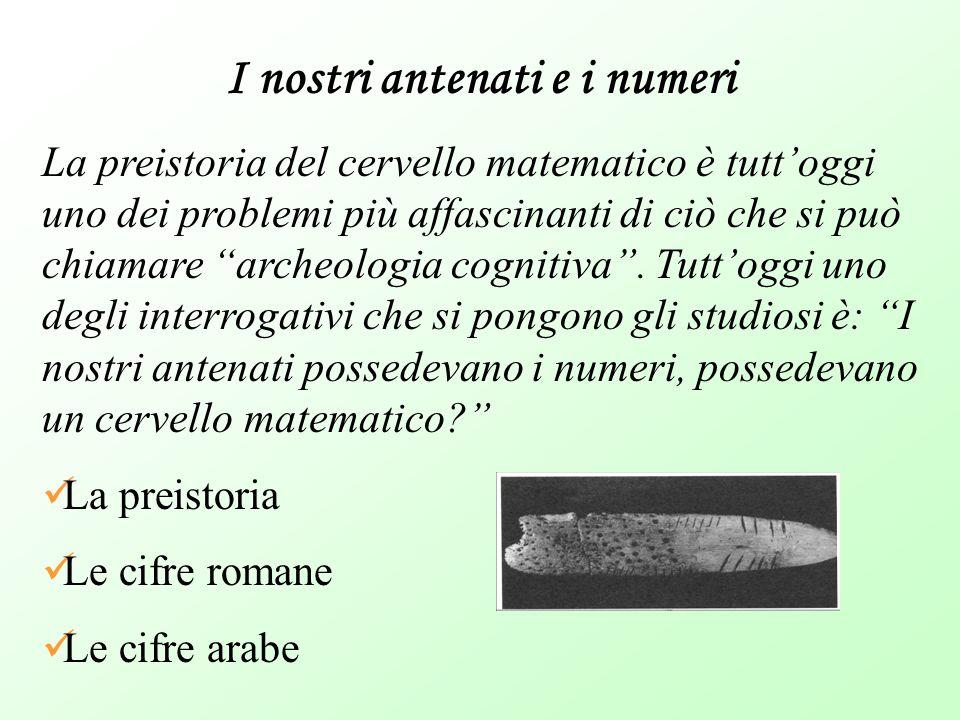 """I nostri antenati e i numeri La preistoria del cervello matematico è tutt'oggi uno dei problemi più affascinanti di ciò che si può chiamare """"archeolog"""