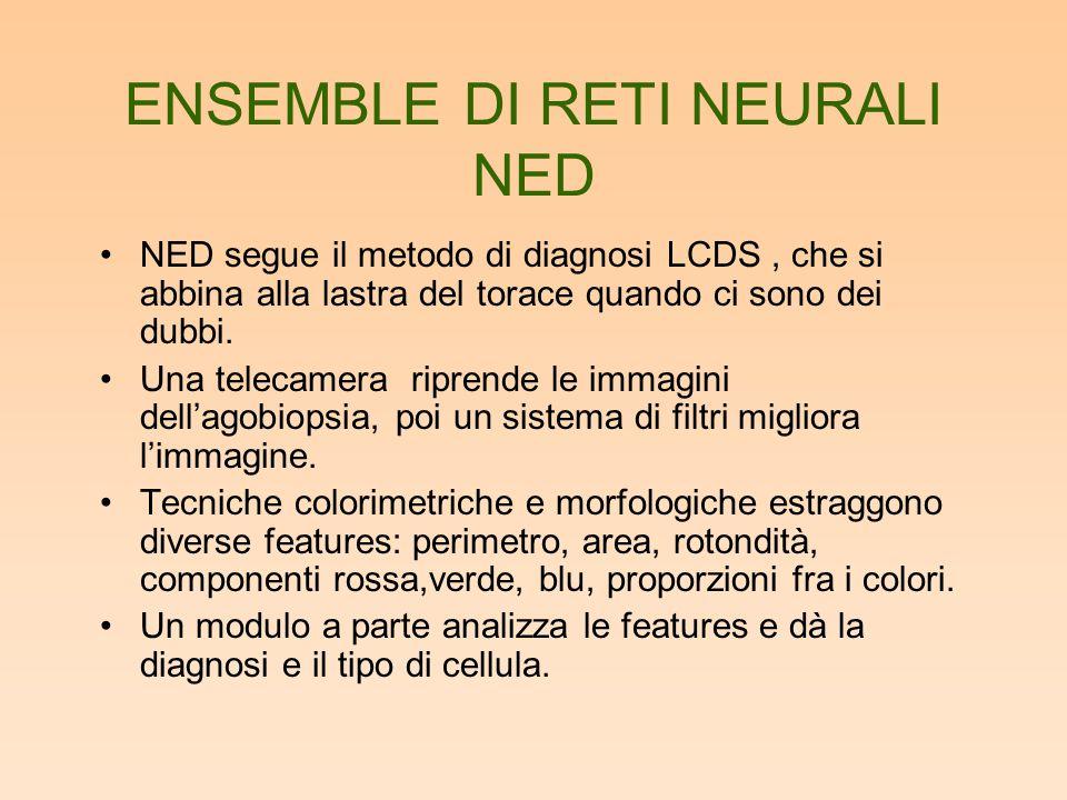 ENSEMBLE DI RETI NEURALI NED NED segue il metodo di diagnosi LCDS, che si abbina alla lastra del torace quando ci sono dei dubbi. Una telecamera ripre