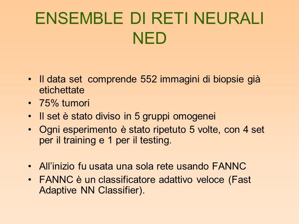 ENSEMBLE DI RETI NEURALI NED Il data set comprende 552 immagini di biopsie già etichettate 75% tumori Il set è stato diviso in 5 gruppi omogenei Ogni esperimento è stato ripetuto 5 volte, con 4 set per il training e 1 per il testing.