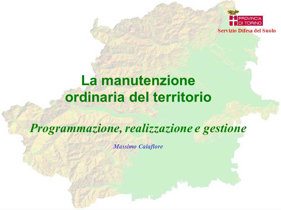 Coscienza della manutenzione ordinariaPianificazione della manutenzione ordinaria Servizio Difesa del Suolo Definizione di un modello per la Programmazione, realizzazione e gestione della manutenzione ordinaria del territorio Avvio dell'attività di manutenzione ordinaria del territorio in Provincia di Torino