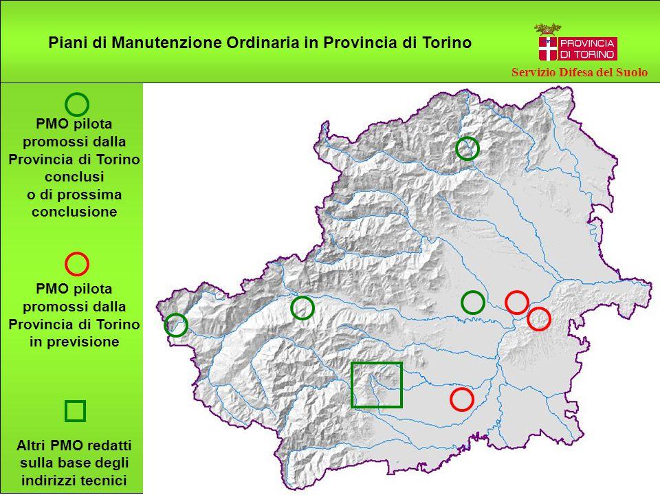 PMO pilota promossi dalla Provincia di Torino conclusi o di prossima conclusione PMO pilota promossi dalla Provincia di Torino in previsione Altri PMO