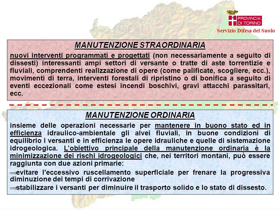 ESEMPIO DI INTERVENTO DI MANUTENZIONE STRAORDINARIA Servizio Difesa del Suolo