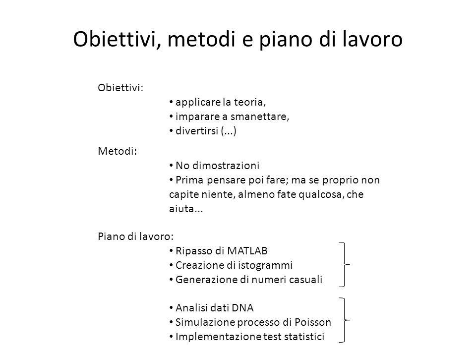 Obiettivi, metodi e piano di lavoro Obiettivi: applicare la teoria, imparare a smanettare, divertirsi (...) Metodi: No dimostrazioni Prima pensare poi