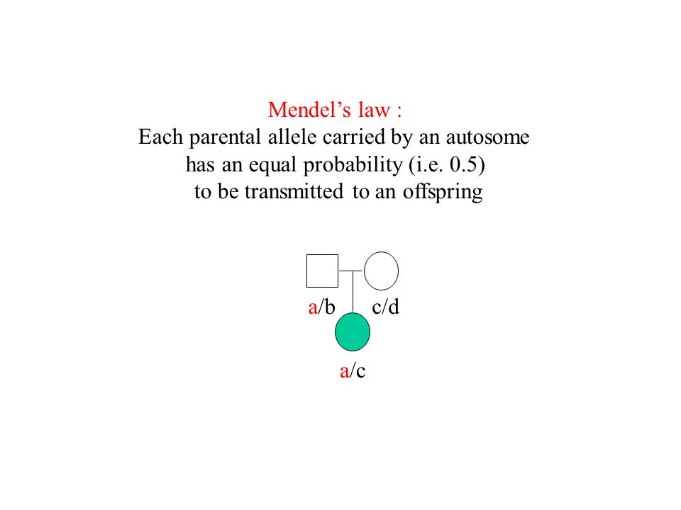 Mendel's law : Each parental allele carried by an autosome has an equal probability (i.e. 0.5) to be transmitted to an offspring a/bc/d a/c