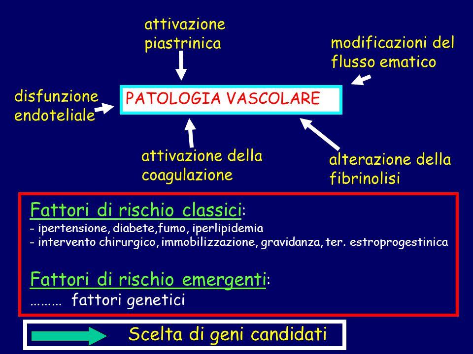 PATOLOGIA VASCOLARE disfunzione endoteliale attivazione piastrinica attivazione della coagulazione modificazioni del flusso ematico Fattori di rischio classici : - ipertensione, diabete,fumo, iperlipidemia - intervento chirurgico, immobilizzazione, gravidanza, ter.