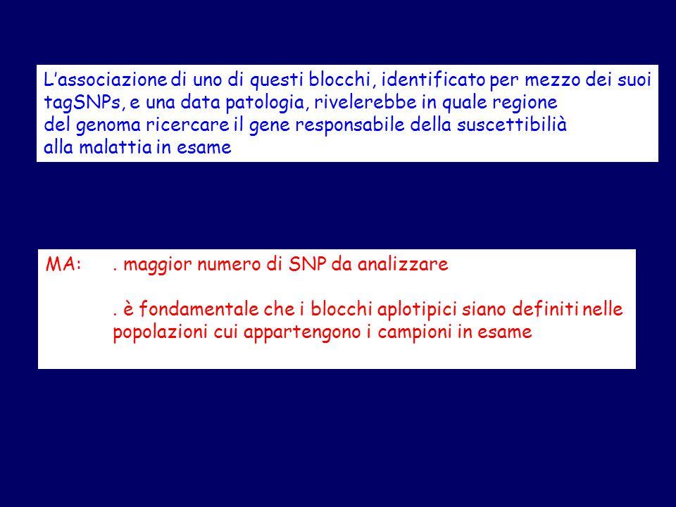 L'associazione di uno di questi blocchi, identificato per mezzo dei suoi tagSNPs, e una data patologia, rivelerebbe in quale regione del genoma ricercare il gene responsabile della suscettibilià alla malattia in esame MA:.