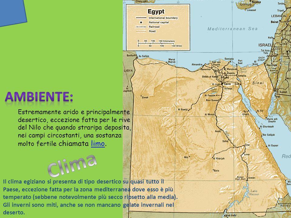 L'Egitto si trova nella parte nordorientale dell'Africa. Confina a ovest con la Libia, a sud col Sudan ed è bagnato a est dal Mar Rosso e a nord Medit