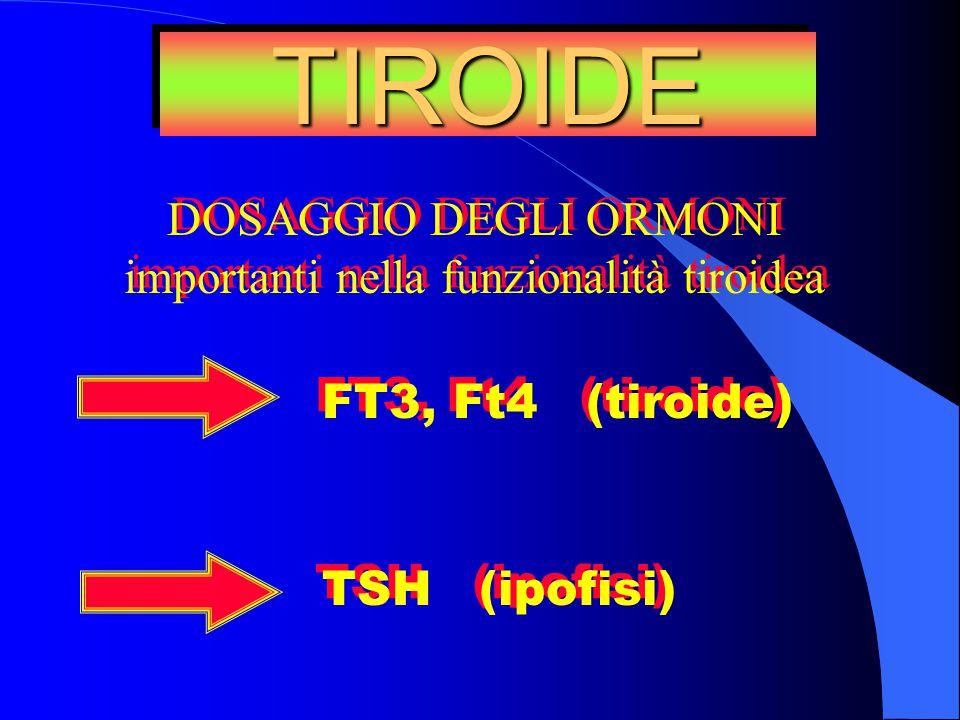 FT3, Ft4 (tiroide) TSH (ipofisi) FT3, Ft4 (tiroide) TSH (ipofisi) TIROIDETIROIDE DOSAGGIO DEGLI ORMONI importanti nella funzionalità tiroidea DOSAGGIO