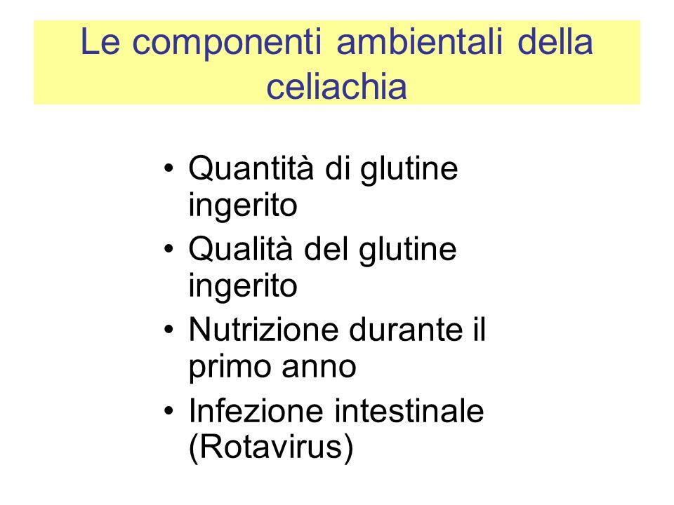Le componenti ambientali della celiachia Quantità di glutine ingerito Qualità del glutine ingerito Nutrizione durante il primo anno Infezione intestin