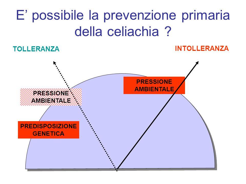 E' possibile la prevenzione primaria della celiachia ? TOLLERANZA INTOLLERANZA PREDISPOSIZIONE GENETICA PRESSIONE AMBIENTALE