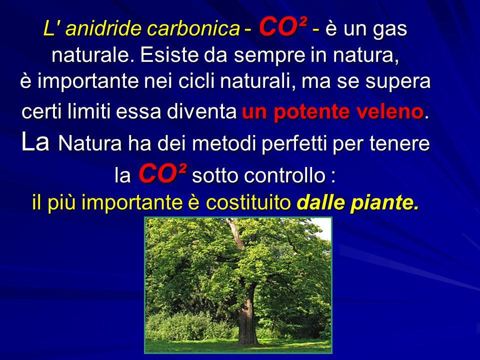 L' anidride carbonica - CO² - è un gas naturale. Esiste da sempre in natura, è importante nei cicli naturali, ma se supera certi limiti essa diventa u