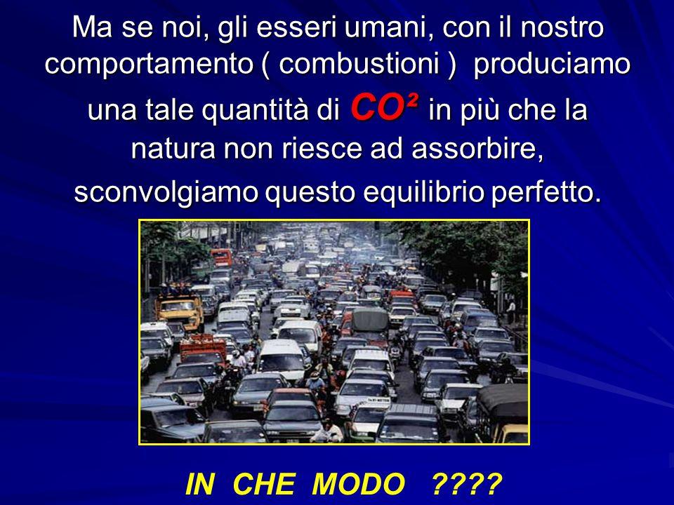 Ma se noi, gli esseri umani, con il nostro comportamento ( combustioni ) produciamo una tale quantità di CO² in più che la natura non riesce ad assorb