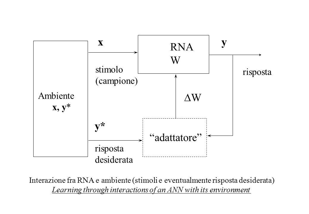 RNA W Ambiente x, y* WW x stimolo (campione) risposta y Interazione fra RNA e ambiente (stimoli e eventualmente risposta desiderata) Learning through interactions of an ANN with its environment y* risposta desiderata adattatore